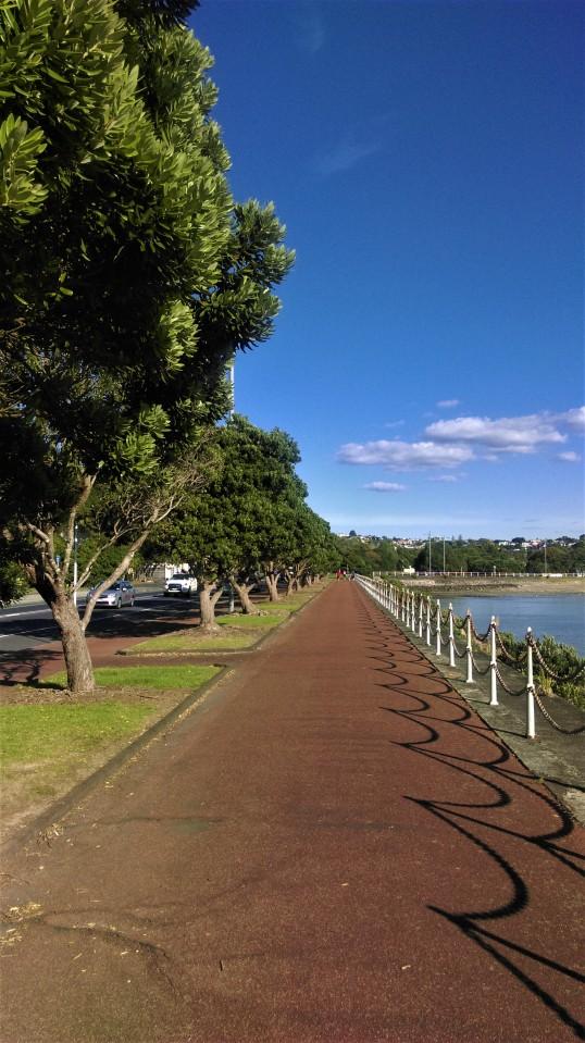 Deptak prowadzący z centrum miasta do Misson Bay - idealne miejsce na poranny jogging